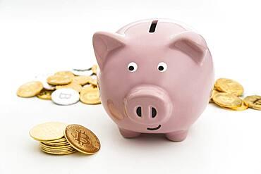Smiling Studio shot of pink piggy bank and bitcoins