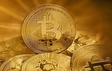 Studio shot of golden bitcoins