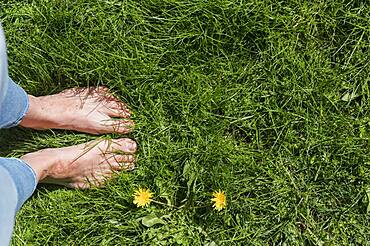 Bare feet of woman standing in lush green grass