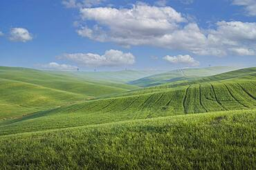 Italy, Tuscany, Val D'Orcia, Pienza, Clouds above green hills