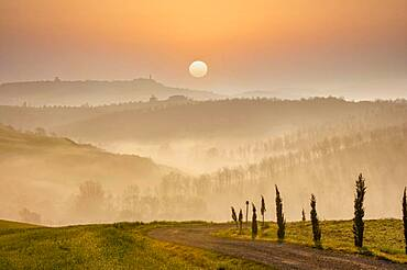 Italy, Tuscany, Val D'Orcia, Pienza, Hills and dirt road covered with mist at sunrise