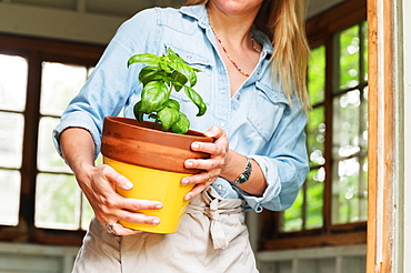 Woman holding potted basil
