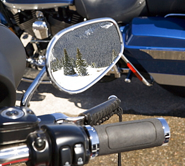 Reflection of snowy trees in wing mirror of motorbike