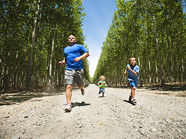 Father with sons (2-9) running down country road