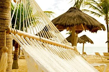 Mexico, Playa Del Carmen, hammock on beach