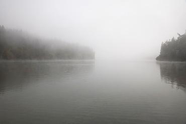 Foggy lake scene
