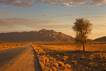 Road and mountains, Namib Desert, Namibia, Africa