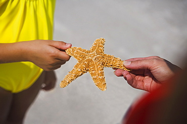 Mother and child holding starfish, Florida, United States