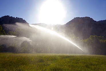 Agricultural sprinkler watering field, Colorado, United States