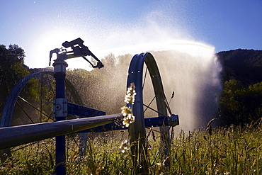Agricultural Sprinkler on field, Colorado, United States