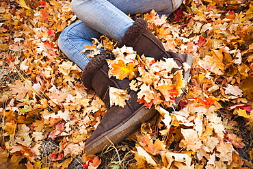 Legs of young woman lying on autumn leaves