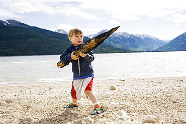Boy (2-3) holding piece of wood, Colorado, USA
