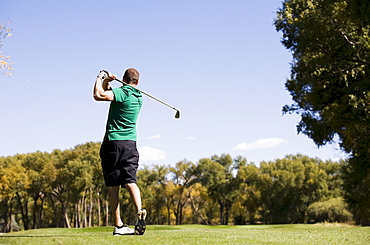 Rear view of man hitting ball on golf course, Colorado, USA