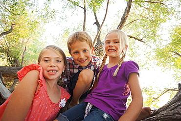 Three children (4-5, 6-7) smiling for portrait in huge tree, Lehi, Utah