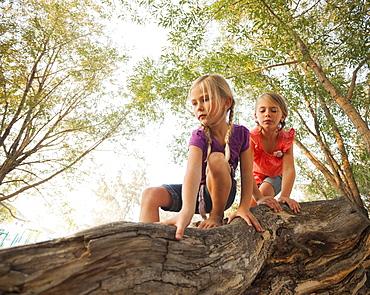 Two little girls (4-5, 6-7) climbing on horizontal tree branch, Lehi, Utah