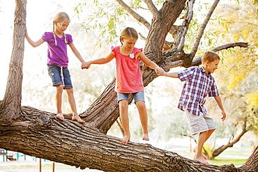 Three kids (4-5, 6-7) balancing on tree branch, Lehi, Utah