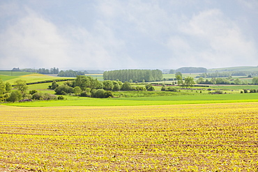 France, Rocroi, Rural landscape, France, Rocroi