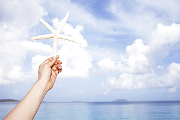 United States Virgin Islands, St. John, Starfish held by female hand, United States Virgin Islands, St. John