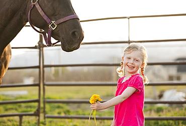 USA, Utah, Lehi, Portrait of girl (2-3) standing with horse