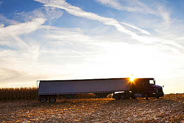 USA, Iowa, Latimer, Truck on harvested field