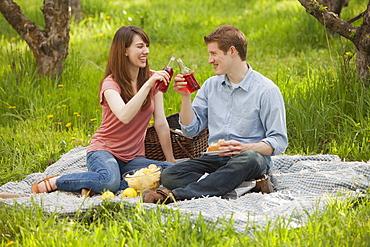 USA, Utah, Provo, Young couple toasting drinks during picnic