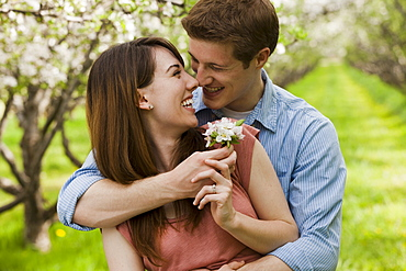 USA, Utah, Provo, Young couple with blossom in orchard