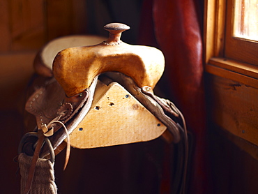 Saddle ion wooden stand