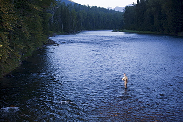 Canada, British Columbia, Fernie, Man fly fishing in river