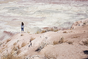 USA, Arizona, Painted Desert, Woman standing and looking at view
