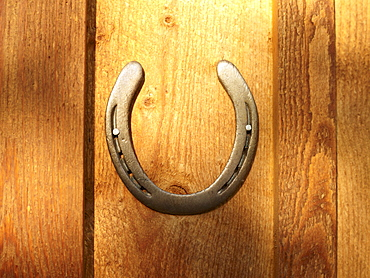 USA, Colorado, Horseshoe hanging on wooden wall, close-up