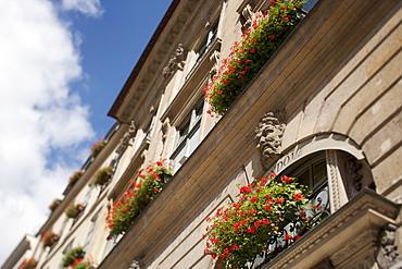 France, Paris, Window boxes outside building