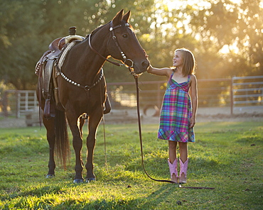 Girl (8-9) stroking horse in paddock