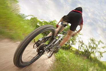 Cyclist on single track trail