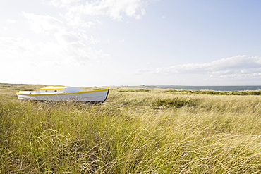 Old wooden boat in the grass
