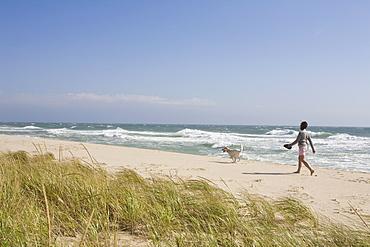 Walking dog on the beach