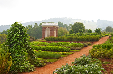 Garden at Thomas Jefferson's house
