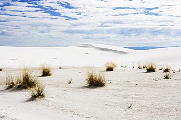 White sand dunes