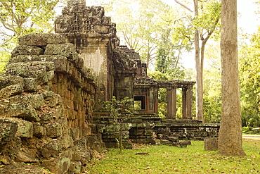 Ancient Temple Angkor Cambodia Khmer Ta Prohm