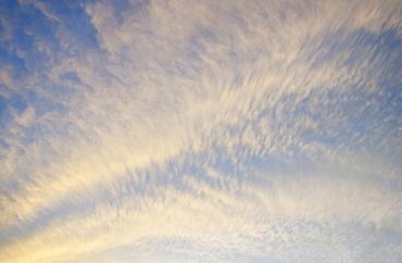 Cirrocumulus clouds in yellow light of setting sun