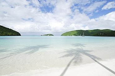 Shadow of palm trees on sandy beach, St. John, United States Virgin Islands