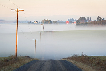 Fog over road, USA, Oregon, Marion County