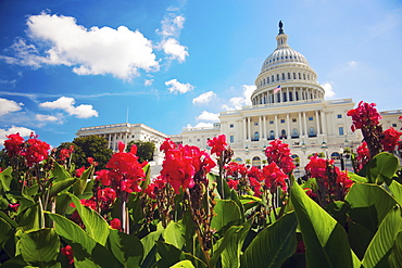 Capitol Building, Washington, DC