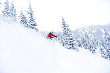 Woman skiing powder