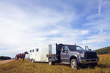 Horse trailer, USA, Western USA, Colorado