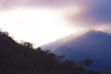 Mexico, Jalisco, Puerto Vallarta, Mountains in fog