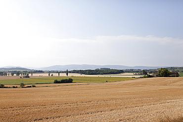France, Drome, Grignan, Rural landscape