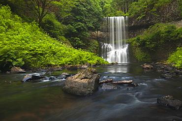 USA, Oregon, Silver Falls State Park, Lower South Falls