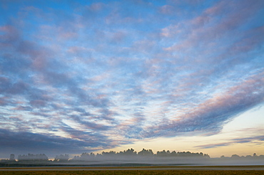 USA, Oregon, Marion County, Field at sunrise