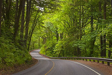 USA, Oregon, Yamhill County, Newberg, View of Wilsonville Highway