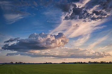USA, Oregon, Marion County, Cloudy sky over field